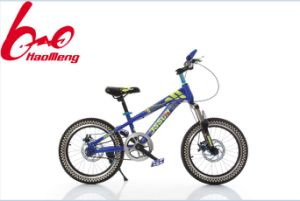 26 Inch Mountain Bike / Bicycle with Disc Brake pictures & photos
