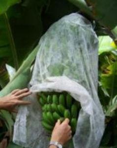 Nao Tecido De TNT Tecido Banana Bags pictures & photos