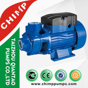 Domestic Qb60 220V 0.5HP Small Vortex Electric Water Pump for Clean Water pictures & photos