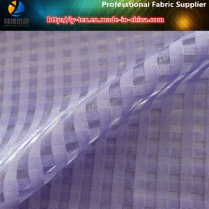 Organza Plaid, Polyester Fabric for Dress pictures & photos