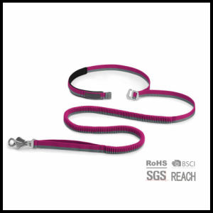 Reflective Nylon Hands Free Waist Bungee Dog Running Leash pictures & photos
