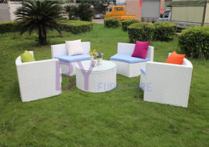 Creative PE Rattan Home Decoration Sofa pictures & photos