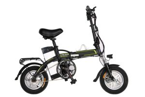 Directly Supply Two Wheel Mini Electric Bike
