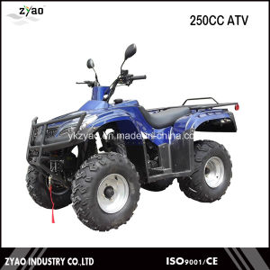 New Style Cheap 250cc ATV pictures & photos