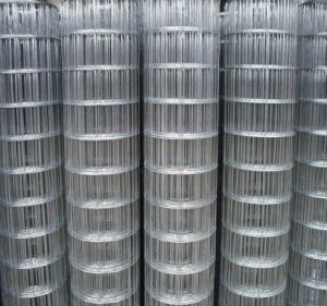 PVC Coated /Galvanized Welded Wire Mesh for Building/Construction Material pictures & photos