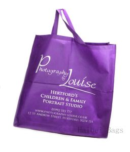 Xtra Large Bag with Card Base (hbnb-578) pictures & photos