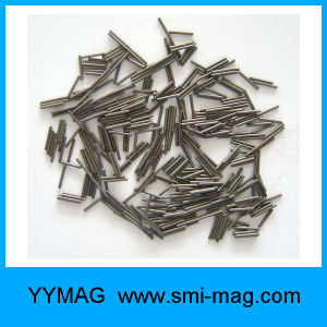 Custom-Made Mini Magnet Micro Magnet Tiny Magnet Neodymium Parylene Magnet pictures & photos