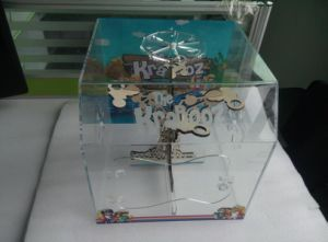 Acrylic Reptile Cage with Magnetic Handle, Acrylic Box pictures & photos