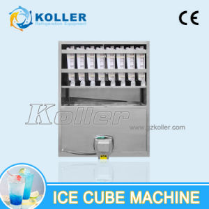 2 Tons/Day Edible Cube Ice Machine with Packing System pictures & photos