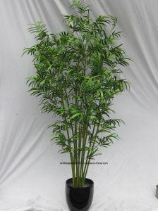Artificial Bamboo Bonsai Trees pictures & photos