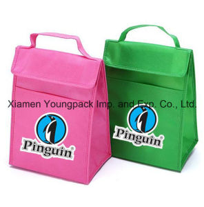 Promotional Custom Small Non-Woven Polypropylene Portable Insulated Food Cooler Bag pictures & photos
