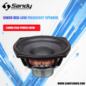 Nv5 Stage Speaker, Small Size Speaker Woofer pictures & photos
