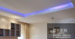 24V SMD 2835 Flexible LED Strip Light RGB pictures & photos