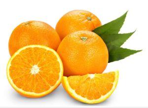 Citrus Aurantium Extract 95%Hesperidin for Apis pictures & photos
