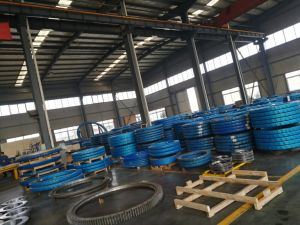 Rollix Slewing Bearing for Tower Crane and Excavator pictures & photos