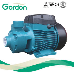 Gardon Electric Brass Impeller Peripheral Water Pump with Ss Shaft pictures & photos