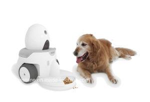 Kinstone Smart Robot Intelligent Robot (KS-SR002) pictures & photos