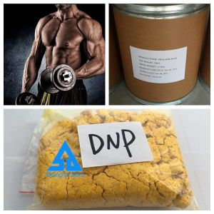 Steroid Raw Yellow Powder DNP for Weight Loss pictures & photos