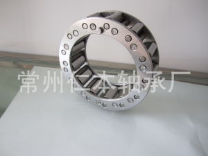 Sprag Type Freewheel Cam Overrunning Backstop Clutch RSCI300 pictures & photos