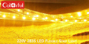 High Quality SMD2835 Flexible LED Strip Lights 220V pictures & photos