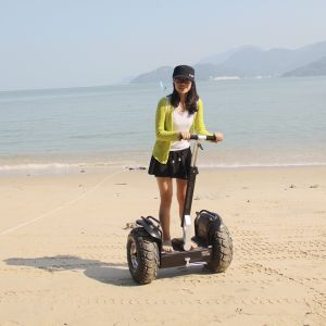 Trendy Designed Lithium Battery Electric Scooter pictures & photos
