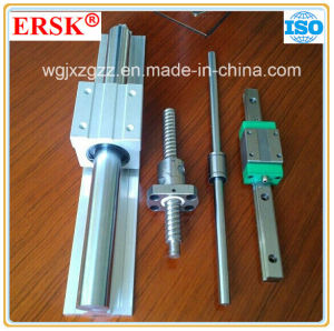 Competitive Price Linear Guide with SBR System pictures & photos