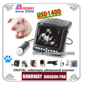 Digital Wrist-Top Veterinary Ultrasound Scanner (BW560V-PRO) , Animal Use Ultrasound Machine pictures & photos