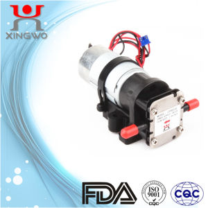 Electric Pump Water Gear Pump Low Pressure FDA (CP001B4)