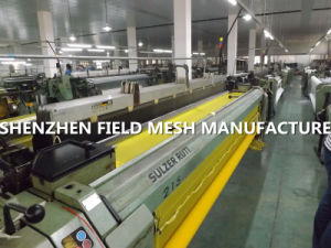 43t Polyester Mesh pictures & photos
