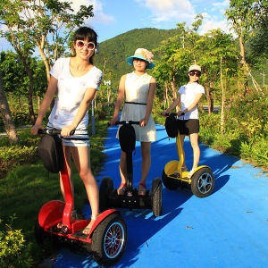 2016 Ce Approved China New Product Two Wheel Self Balancing Electric Scooter pictures & photos