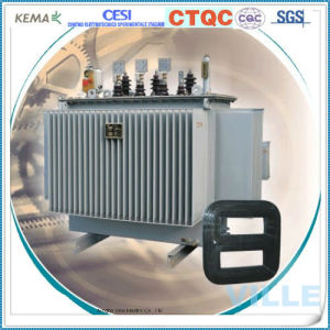 Distribution Transformer /Power Transformer/Power Substation pictures & photos