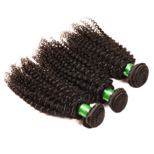 Grade 7A Brazilian Curly Virgin Hair Kinky Curly Virgin Hair 3PCS/ Lot Unprocessed Remy Human Hair Weave Afro Kinky Curly Hair pictures & photos