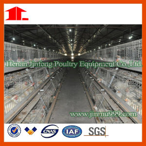 Poultry Equipment Layer Broiler Chicken Cage Made in China pictures & photos