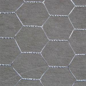 Galvanized Hexagonal Wire Mesh (Chicken Mesh) pictures & photos