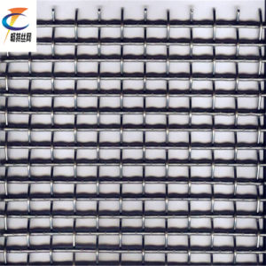 Best Price Crimped Wire Mesh From Factory pictures & photos