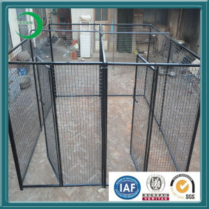 Outdoor Dog Fence/Dog Kennel pictures & photos