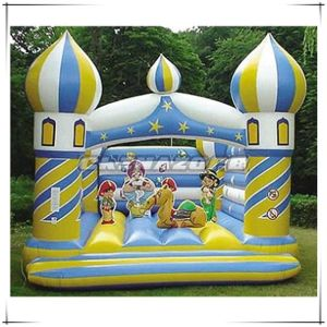 Hot Sale Type Inflated Castle Bouncer at Factory Cost pictures & photos