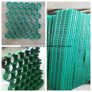HDPE Gravel Grid Grass Grid Pavers for Driveway pictures & photos