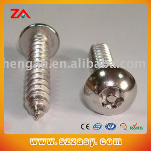 High Quality Stainless Steel Screw pictures & photos