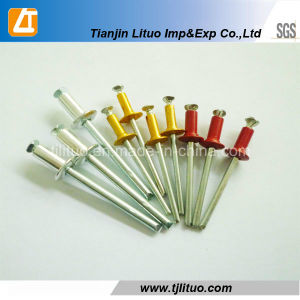Color Blind Rivets for Export From China pictures & photos