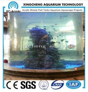 Transparent Cylindrical Acrylic Fish Tank Price pictures & photos