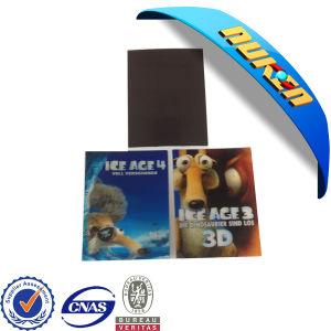 Custom 3D Lenticular Sticker Magnet Printing pictures & photos