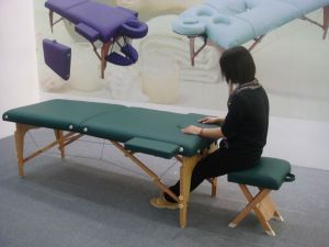 Portable Massage Table Mt-007r pictures & photos