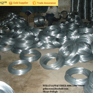 Electro/Hot Dipped Galvanized Steel Wire Factory pictures & photos