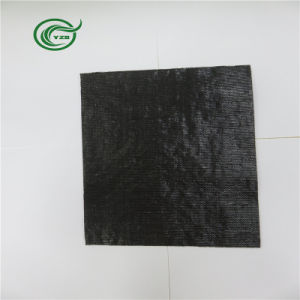 Pb2813 Woven Fabric PP Primary Backing for Carpet (Black) pictures & photos