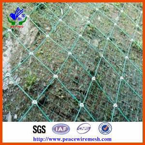 Slope Sns Protective Wire Mesh (Factory direct prices) (SNS001) pictures & photos