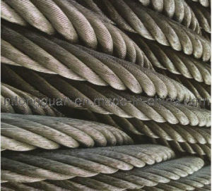 Steel Wire Rope Come with ISO9001: 2008 pictures & photos