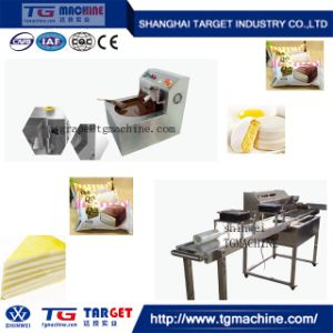 Commercial and Practical Small Sg Chocolate Depositing Enrobing Machine pictures & photos