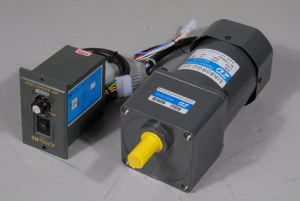 120V 60W Controls AC Motor (5IK60RGU-CF/5GU 60KB) pictures & photos