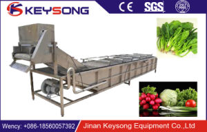 Industrial Fruit Ozone Water Bubble Leafy Vegetable Washing Machine pictures & photos